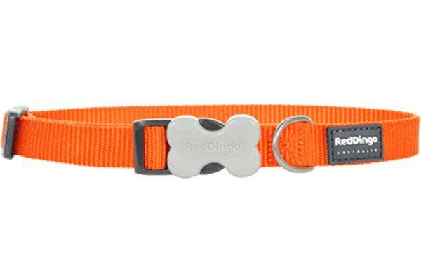 Red Dingo Klasik Turuncu Köpek Boyun Tasması 12mm