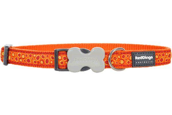 Red Dingo Bedrock Desenli Turuncu Köpek Boyun Tasması 12mm