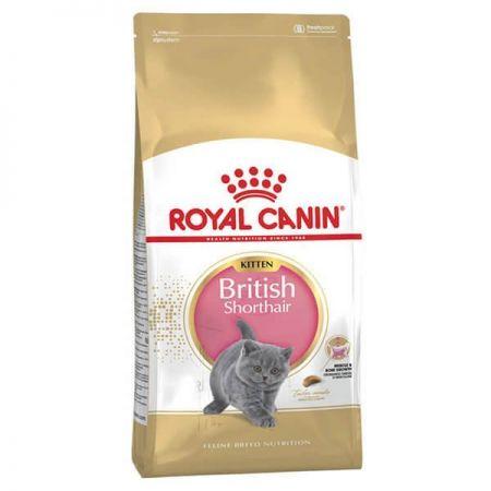 Royal Canin British Shorthair Kitten Yavru Kedi Maması 2 Kg