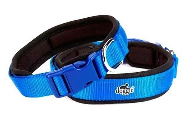 Doggie Havalı Dokuma Köpek Boyun Tasması Medium Mavi 2,5x40-50 Cm