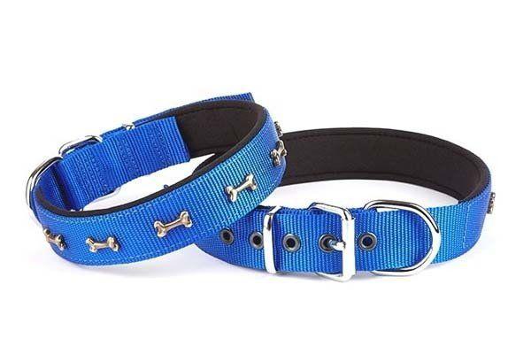 Doggie Comfort Dokuma Kemikli Köpek Boyun Tasması Large Mavi 3x47-55 Cm