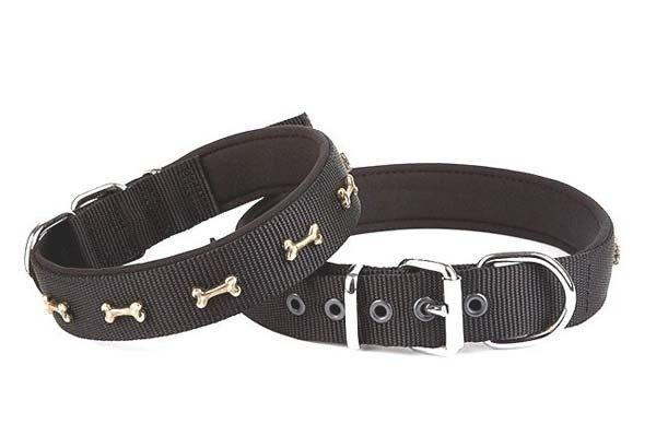 Doggie Comfort Dokuma Kemikli Köpek Boyun Tasması Large Siyah 3x47-55 Cm