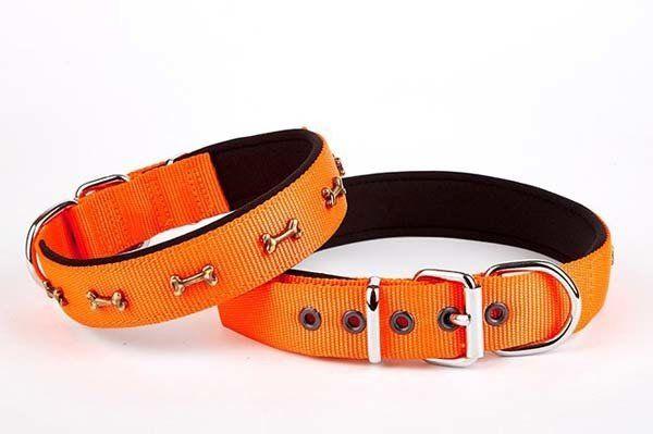 Doggie Comfort Dokuma Kemikli Köpek Boyun Tasması Medium Turuncu 3x42-50 Cm