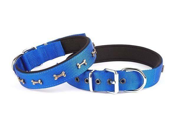 Doggie Comfort Dokuma Kemikli Köpek Boyun Tasması Large Mavi 2,5x42-50 Cm