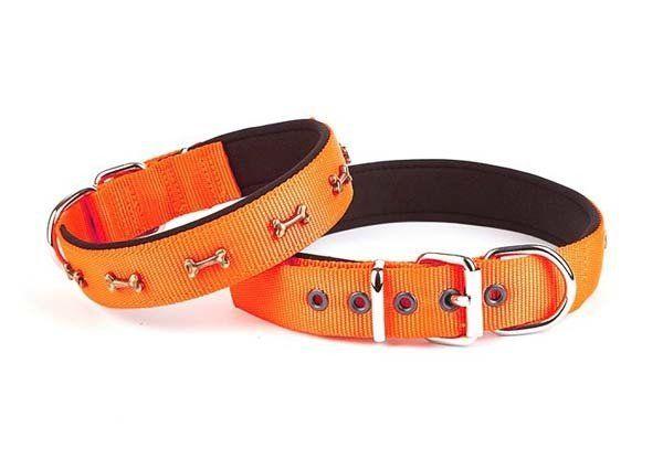 Doggie Comfort Dokuma Kemikli Köpek Boyun Tasması Medium Turuncu 2,5x37-45 Cm
