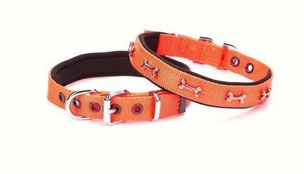 Doggie Comfort Dokuma Kemikli Köpek Boyun Tasması Medium Turuncu 2x35-40 Cm