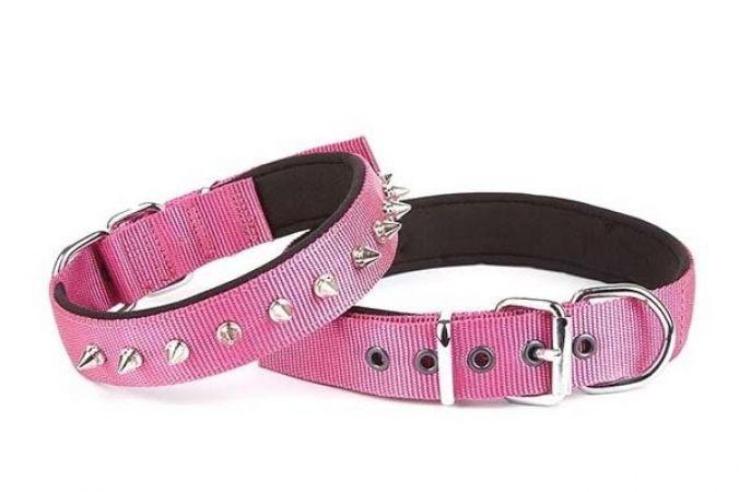 Doggie Comfort Dokuma Çivili Köpek Boyun Tasması Medium Mor 3x42-50 Cm