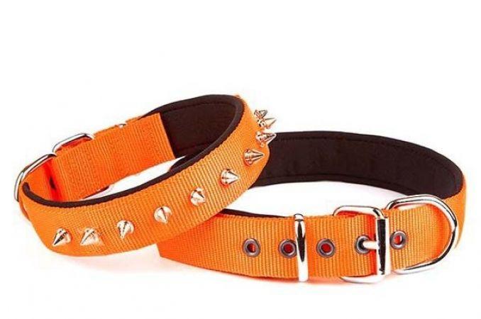 Doggie Comfort Dokuma Çivili Köpek Boyun Tasması Medium Turuncu 3x42-50 Cm