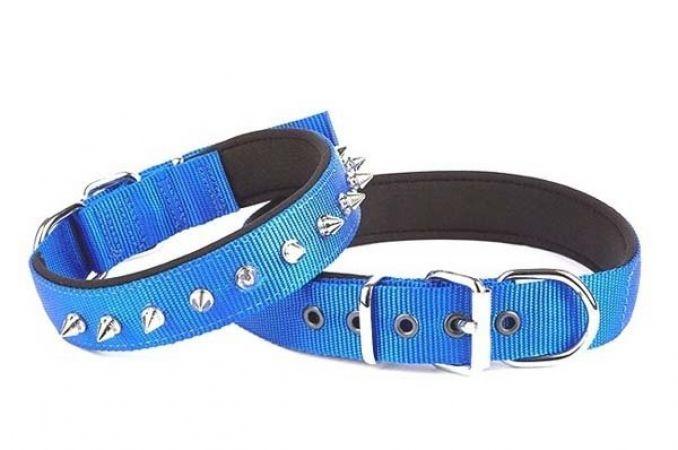 Doggie Comfort Dokuma Çivili Köpek Boyun Tasması Medium Mavi 3x42-50 Cm