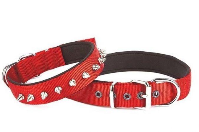 Doggie Comfort Dokuma Çivili Köpek Boyun Tasması Medium Kırmızı 3x42-50 Cm