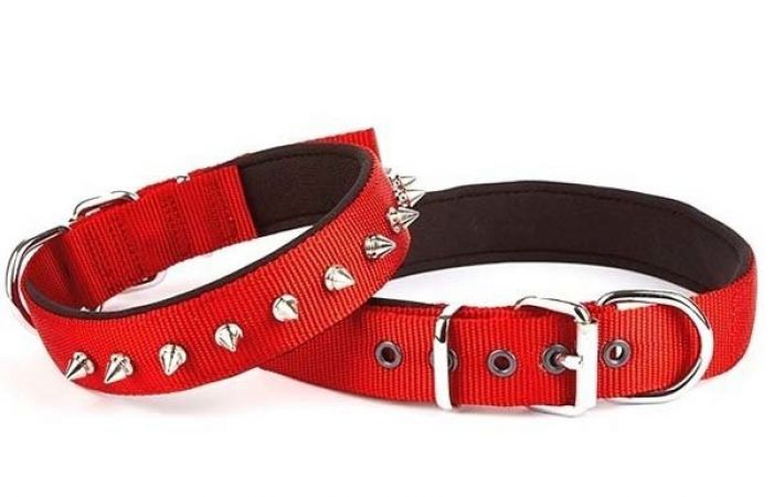Doggie Comfort Dokuma Çivili Köpek Boyun Tasması Medium Kırmızı 2,5x37-45 cm