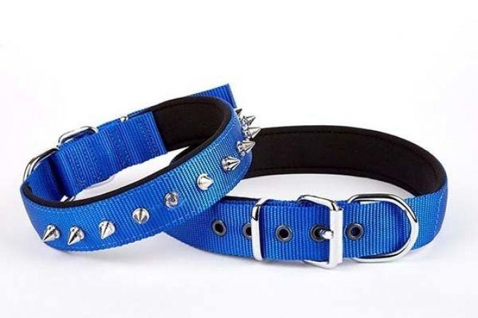 Doggie Comfort Dokuma Çivili Köpek Boyun Tasması Medium Mavi 2,5x37-45 cm