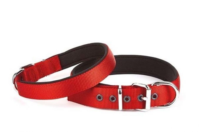 Doggie Comfort Dokuma Köpek Boyun Tasması Large Kırmızı 3x47-55 Cm