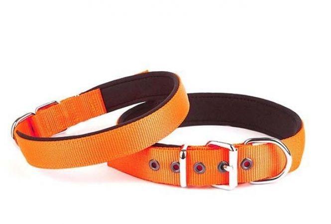 Doggie Comfort Dokuma Köpek Boyun Tasması Medium Turuncu 3x42-50 Cm