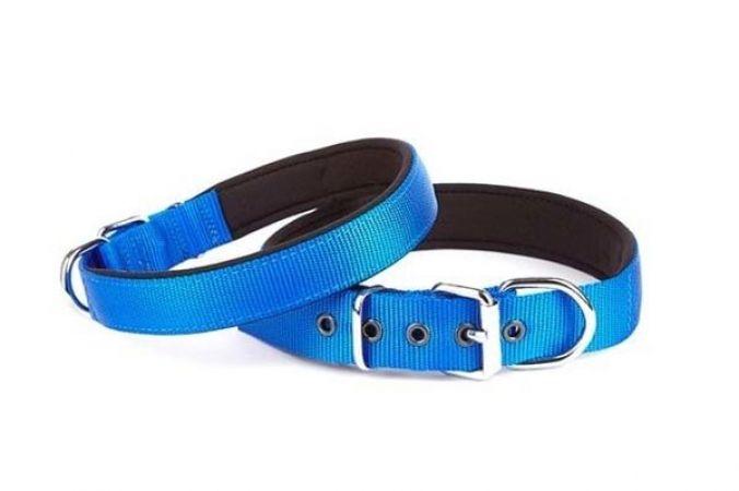 Doggie Comfort Dokuma Köpek Boyun Tasması Large Mavi 2,5x42-50 Cm
