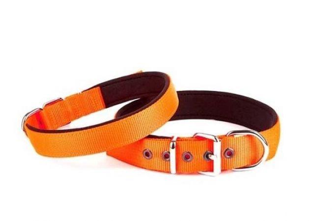 Doggie Comfort Dokuma Köpek Boyun Tasması Medium Turuncu 2,5x37-45 Cm
