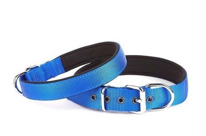 Doggie Comfort Dokuma Köpek Boyun Tasması Medium Mavi 2,5x37-45 Cm