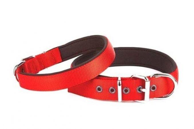 Doggie Comfort Dokuma Köpek Boyun Tasması Medium Kırmızı 2,5x37-45 Cm
