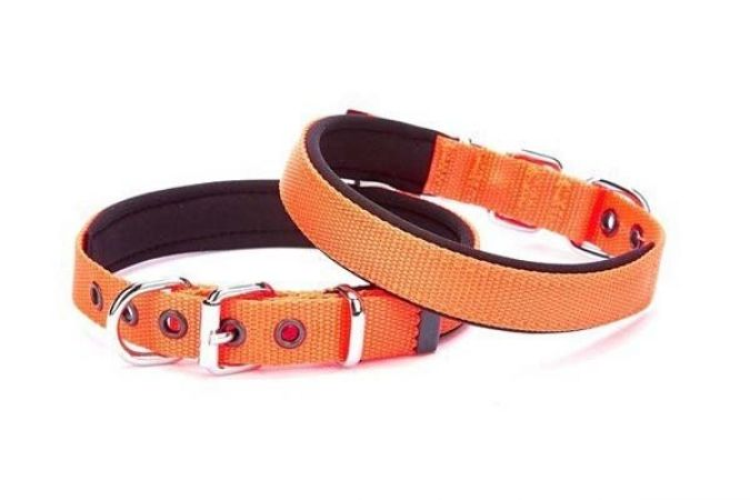 Doggie Comfort Dokuma Köpek Boyun Tasması Small Turuncu 1,5x20-25cm