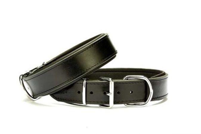 Doggie Güçlü Deri Köpek Boyun Tasması Medium Siyah 4x52-60 Cm