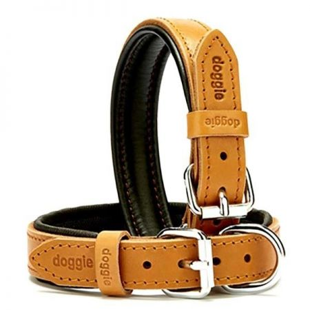 Doggie Fırstclass Köpek Deri Boyun Tasması Medium Camel 2,5x37-45 Cm