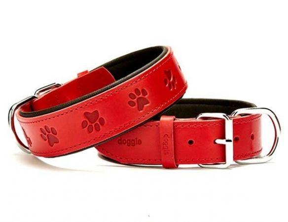 Doggie Comfort Deri Pati Desenli Köpek Boyun Tasması Medium Kırmızı 4x52-60 Cm