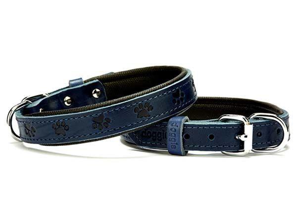 Doggie Comfort Deri Pati Desenli Köpek Boyun Tasması Medium Mavi 2x35-40 Cm