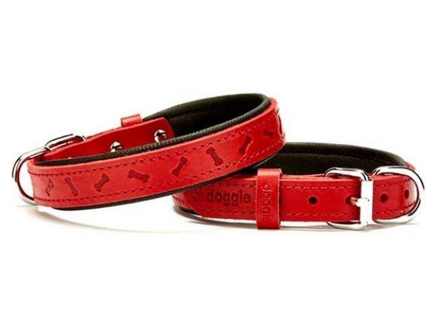 Doggie Comfort Deri Kemik Desenli Köpek Boyun Tasması Medium Kırmızı 2x35-40 Cm