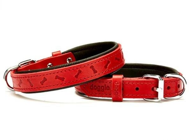 Doggie Comfort Deri Kemik Desenli Köpek Boyun Tasması Small Kırmızı 2x30-35 Cm