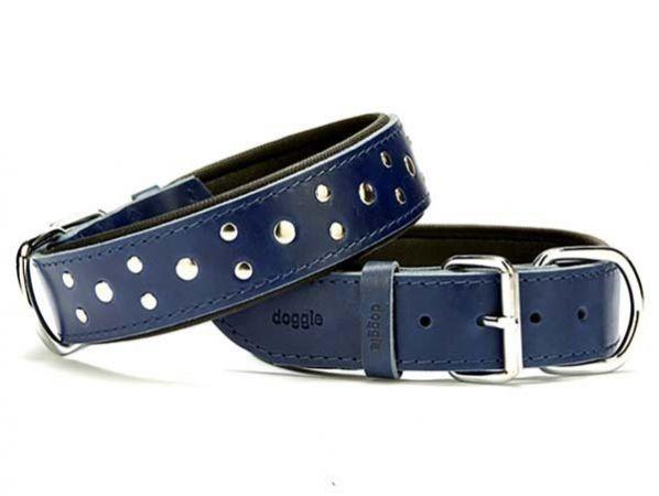 Doggie Comfort Deri Rivetli Köpek Boyun Tasması Large Mavi 4x57-65 Cm