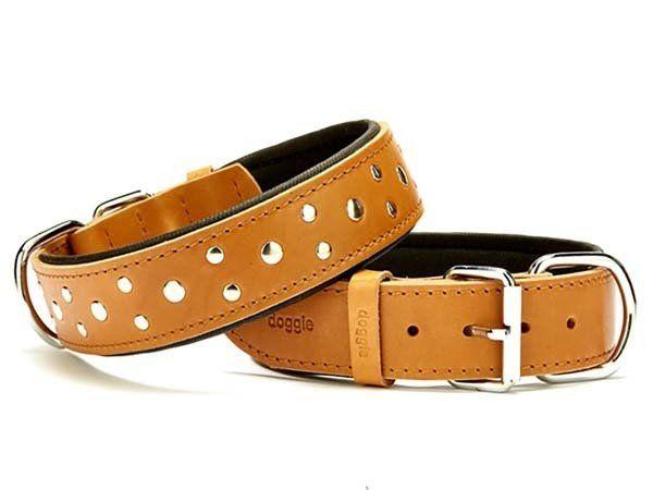 Doggie Comfort Deri Rivetli Köpek Boyun Tasması Large Camel 4x57-65 Cm