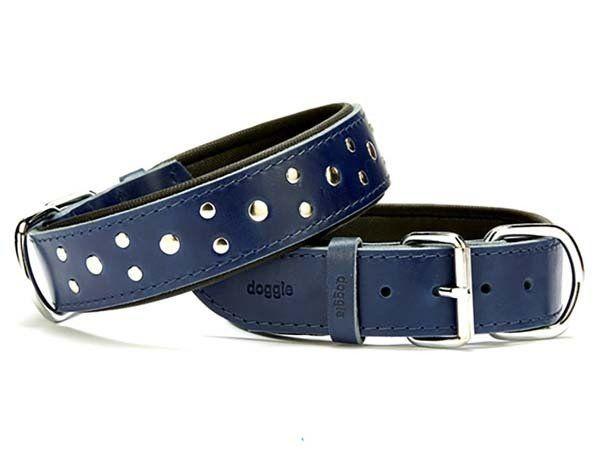 Doggie Comfort Deri Rivetli Köpek Boyun Tasması Medium Mavi 4x52-60 Cm