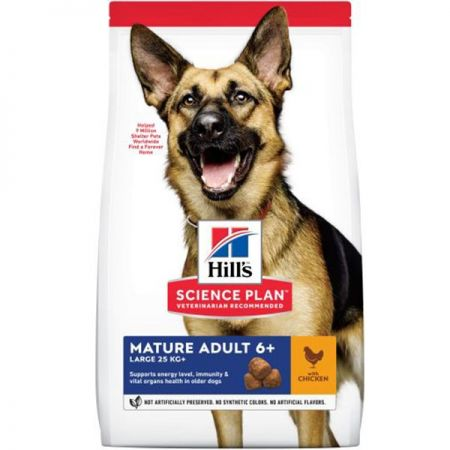 Hills Adullt Mature Large Breed Chicken Yaşlı Tavuklu Kuru Köpek Maması 14 Kg