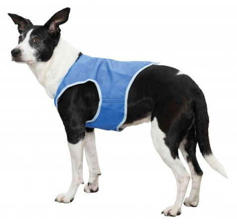 Trixie Köpek Soğutuculu Yelek M:30 Cm Mavi