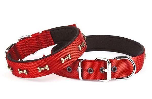 Doggie Comfort Dokuma Kemikli Köpek Boyun Tasması Large Kırmızı 2,5x42-50 Cm